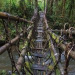 Path to adventure